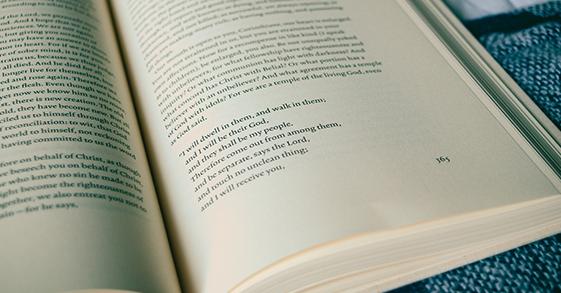 """Numérotation de page 1500x800 pages rel = """"next"""" et rel = """"prev"""""""