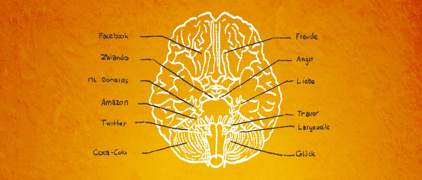 brainbranding4 Consommation de marque