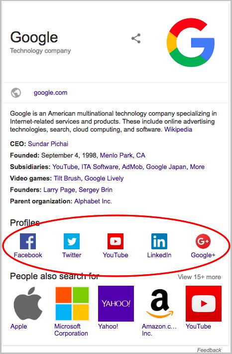 Figure 8 - Extraits riches de profils sociaux Boutique en ligne Rich Snippet Boutique en ligne