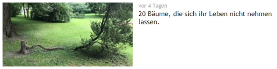 3 Evergreen Content Contenterstellung