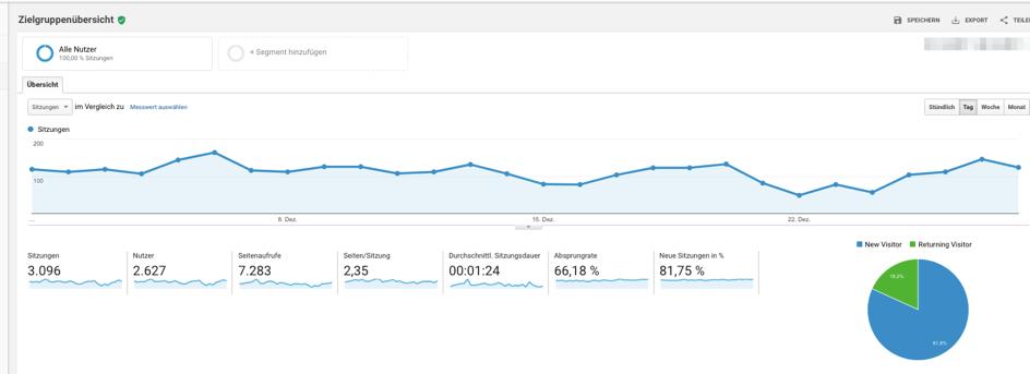 Standard Ansicht mit den wichtigsten KPIs aus Google Analytics