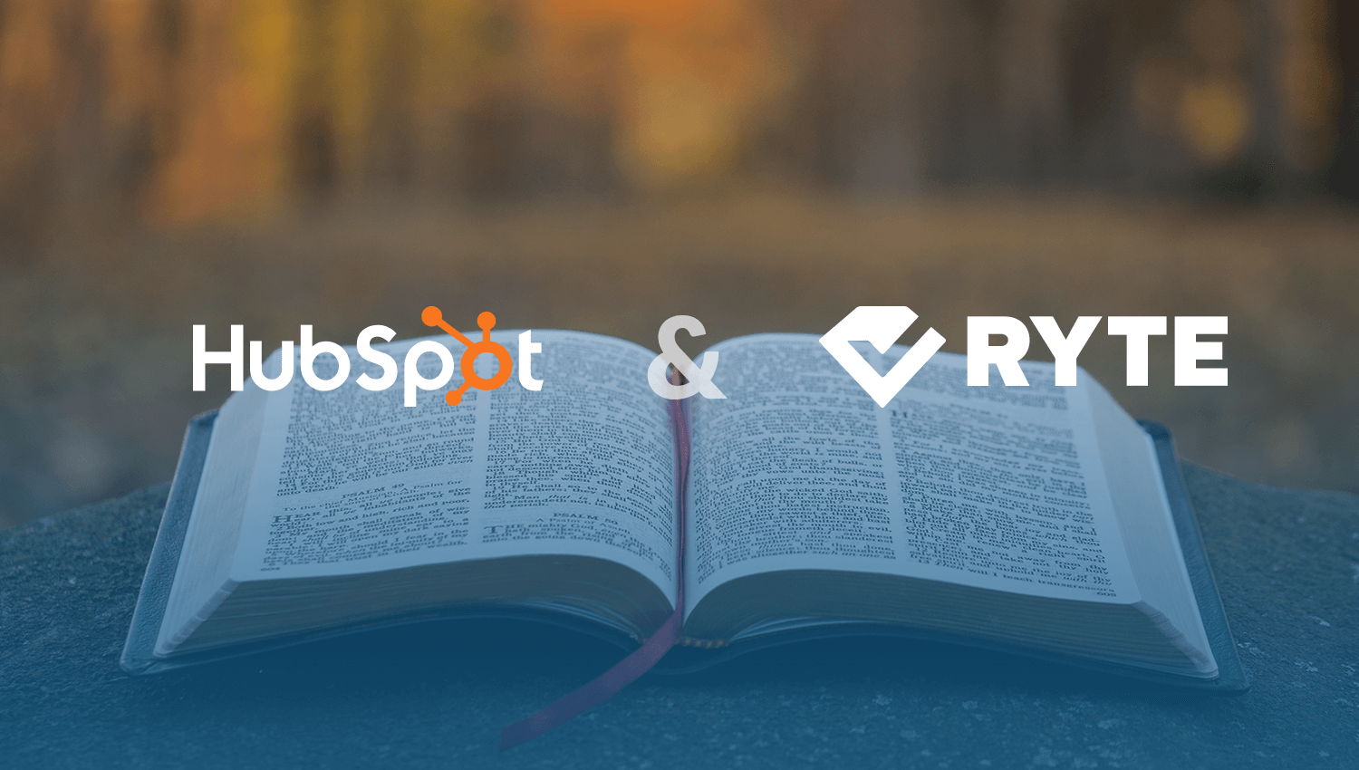 SEO-Audit-Ryte-Hubspsot-Ebook-1 SEO Audit